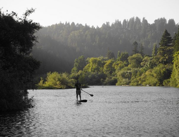 paddleboarding on the russian river